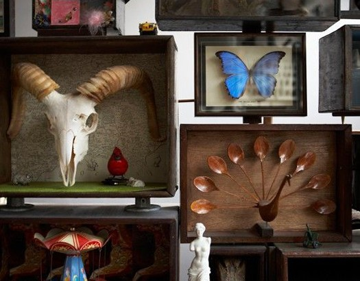 Jamie Theakston. Martin Cottis. Wall of Curiosities.