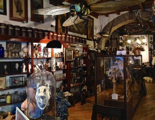 Il negozio Antichi Vizi, Milano