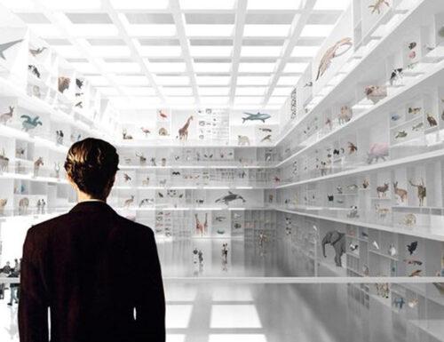 Wunderkammer – SEPTEMBRE ARCHITECTURE