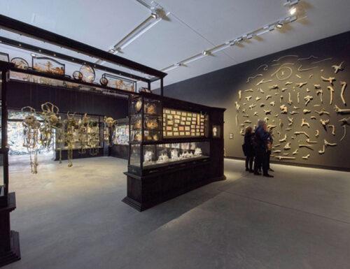 Le Wunderkammer alle Biennali di Venezia