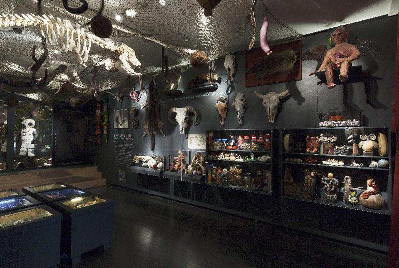 Cabinets of Curiosity, Lyndal Osborne
