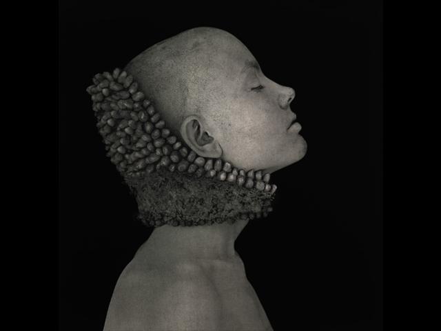Una mutazione silente, Roberto Kusterle