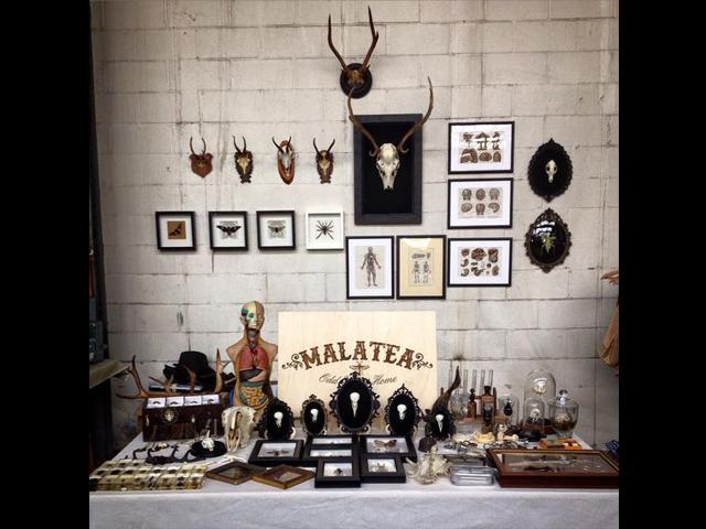 Malatea Studio, Future Vintage Festival